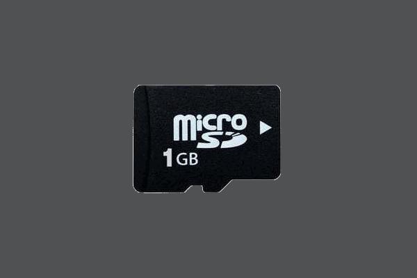 iZoneProducts-microSD